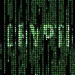 Hide Passwords