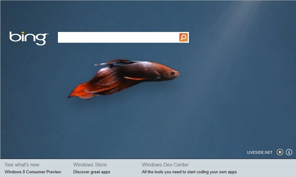 Bing-for-Windows-8-Consumer-Preview