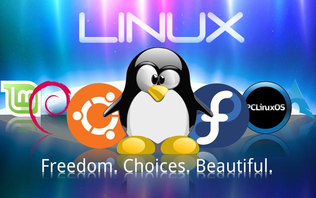 Linux-Distros-2013